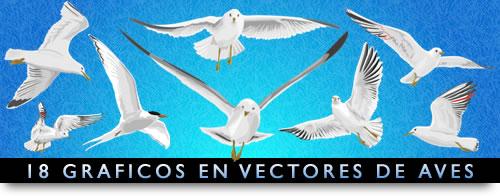 avesvector