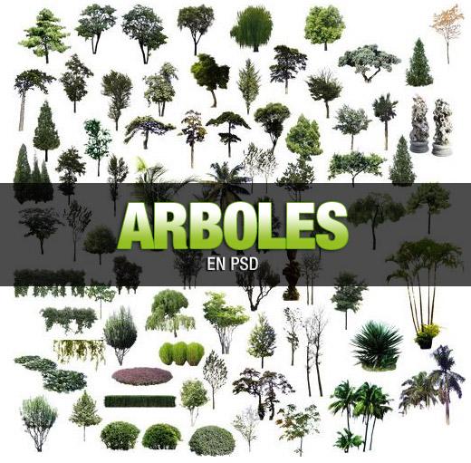 Gran variedad de árboles en PSD Arboles